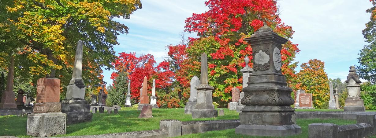Profiter des couleurs des saisons
